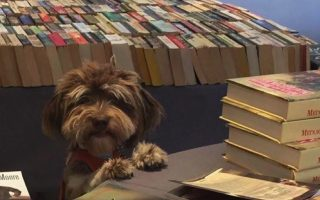 charity-book-sale-athens-march-11-12