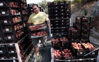 food-and-drink-trade-deficit-shrinks
