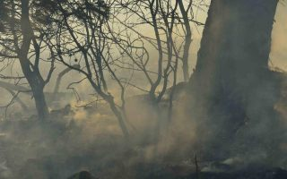 firefighters-battle-spreading-wildfire-near-athens-homes-damaged