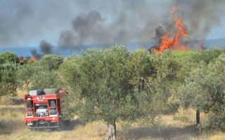 three-charged-with-deliberate-arson-on-corfu