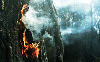 destructive-fires-finally-brought-under-control