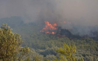 large-wildfire-threatens-homes-on-ionian-island-of-zakynthos