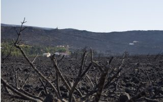kythira-fire-was-this-year-s-most-devastating
