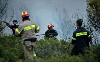 firefighter-injured-by-falling-rock-in-peloponnese