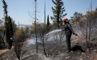 arson-suspected-in-fires-raging-on-ionian-island-of-zakynthos