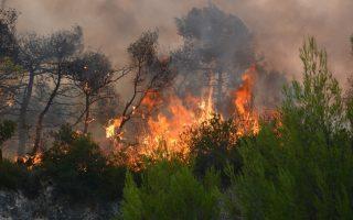 numerous-wildfires-put-strain-on-zakynthos
