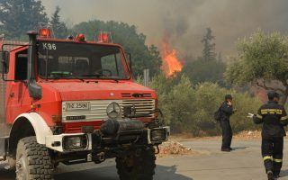 arson-blamed-for-zakynthos-fires
