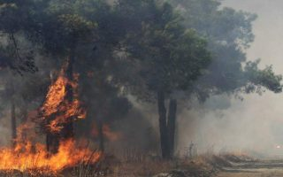 two-arrested-on-arson-charges-over-forest-fires-in-peloponnese