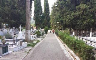 rodents-infest-cemeteries-in-northern-greece