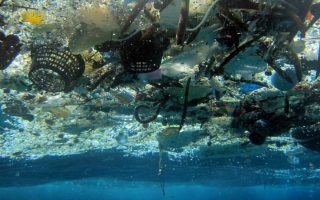 mediterranean-turning-into-plastic-trap-wwf-warns0