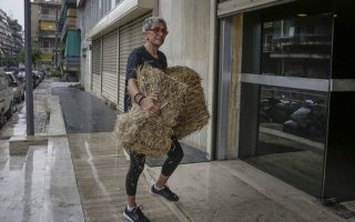 protesters-throw-hay-outside-anel-amp-8217-s-offices