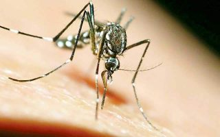 two-new-cases-of-west-nile-virus-in-northern-greece