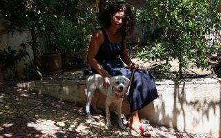 loukoumaki-the-dog-recovers-from-greek-wildfire