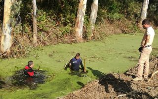 search-continues-in-preveza-after-discovery-of-human-skull