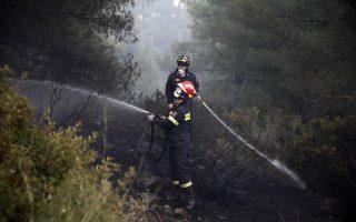 blaze-in-halkidiki-brought-under-control
