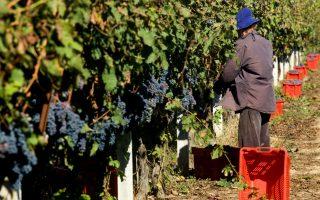 aegean-wines-athens-october-21