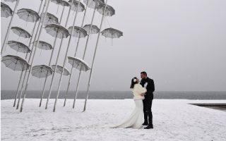 white-wedding0