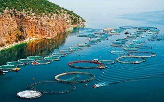 greek-fish-producers-eyeing-chinese-market