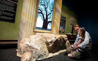 ancient-greek-culture-showcased-at-indianapolis-museum