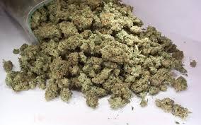 bags-of-cannabis-found-near-ioannina
