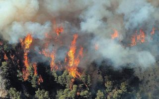 two-dozen-fires-reported-just-over-12-hours