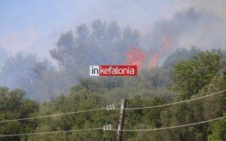 numerous-blazes-break-out-in-greece