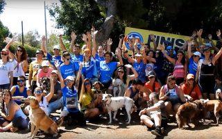 penny-marathon-athens-july-21