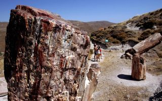 man-stopped-at-lesvos-airport-with-petrified-forest-fragments-in-bags