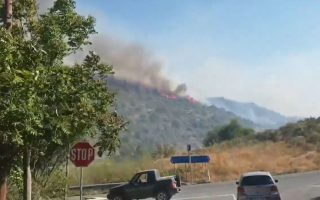 one-arrested-following-limassol-wildfire