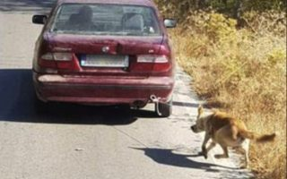 man-who-dragged-dog-with-car-arrested-in-crete