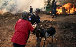 fire-resurges-on-evia-challenges-firefighters