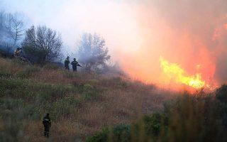 firefighters-battle-blaze-in-mandra-western-attica