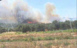 blaze-burning-grassland-in-marathonas