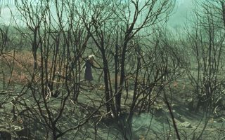 galician-film-wins-top-prize-in-thessaloniki-film-festival