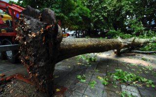 storms-wreak-havoc-on-zakynthos
