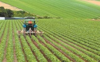 israeli-envoy-minister-discuss-upgrading-agricultural-cooperation