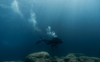 diving-clubs-express-confusion-ask-to-be-allowed-to-reopen
