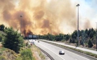large-fire-fanned-by-winds-in-fthiotida