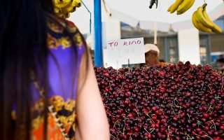 fruit-exports-pick-up-in-first-half-of-year