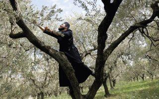the-italian-monks-loyal-to-the-greek-orthodox-rite