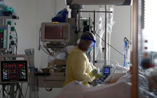 intubations-at-607-101-new-covid-19-deaths0