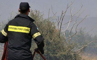 firefighters-still-battling-blaze-in-mani-in-the-peloponnese
