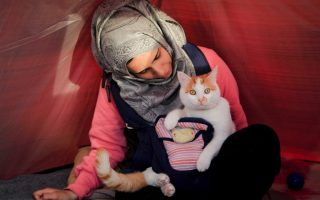 palestinian-syrian-relives-parents-amp-8217-fate-in-becoming-refugee