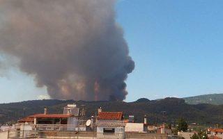 firefighters-battle-blaze-in-evia