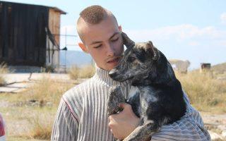 greek-animal-rescue-athens-thessaloniki-patra-amp-038-amaliada-november-1