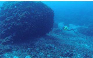 antikythera-wreck-piraeus-to-march-18