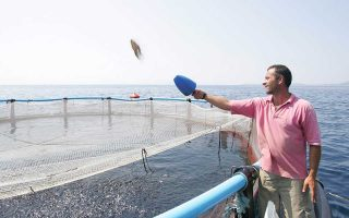greek-fish-farming-suffering-from-fierce-competition-after-lira-drop