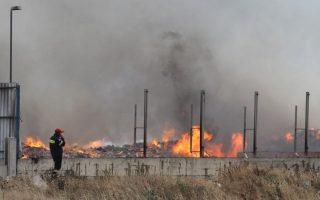 burned-plant-still-toxic-say-activists