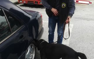 police-dog-leads-to-arrest-of-thessaloniki-man-over-drugs