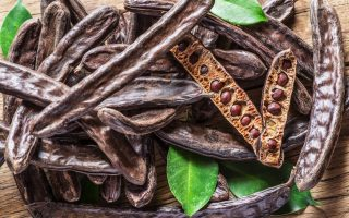 crete-campaigns-for-the-neglected-miraculous-carob